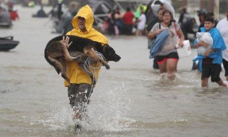Бијонсе и Опра Винфри собираат помош за жртвите од ураганот Харви