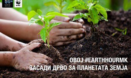 ПОВРЗИ СЕ СО ПЛАНЕТАТА: Ќе се садат илјадници дрва за Часот на планетата Земја