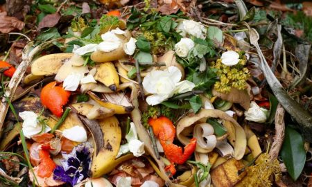 ИСТРАЖУВАЊЕ: Американците фрлаат 150.000 тони храна дневно